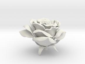 Rose head in White Natural Versatile Plastic
