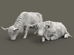 Highland Cattle Set 1:87 two different pieces in Smooth Fine Detail Plastic