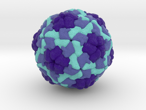 Hepatitis A Virus in Natural Full Color Sandstone