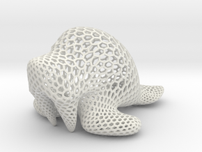 Walrus - hexagonal in White Natural Versatile Plastic