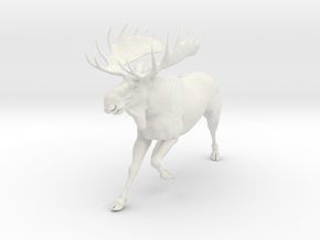 moose in White Natural Versatile Plastic