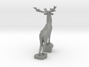 Noble deer in Gray PA12