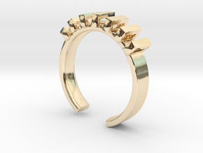 Lord Shackle Ring - Sz. 7 in 14K Yellow Gold