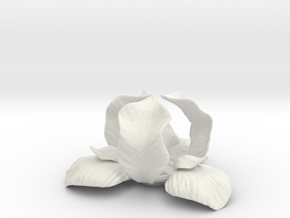 Iris Candle Holder in White Natural Versatile Plastic