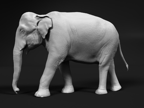 Indian Elephant 1:43 Walking Female in White Natural Versatile Plastic