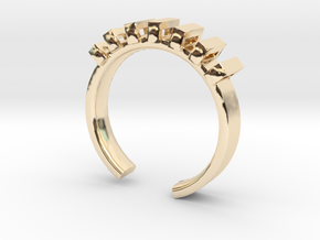 Lord Shackle Ring - Sz. 8 in 14K Yellow Gold
