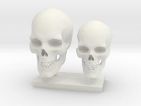Skull - 2 pcs 20-23 mm 1:9  in White Natural Versatile Plastic