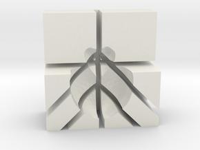 Mouse brain Matrix in White Natural Versatile Plastic: Large