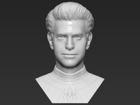 Spider-Man Andrew Garfield bust in White Natural Versatile Plastic