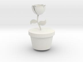 Flower Pot (small) in White Natural Versatile Plastic