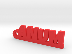 ANUM_keychain_Lucky in Red Processed Versatile Plastic
