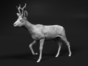 Roe Deer 1:12 Walking Male in White Natural Versatile Plastic