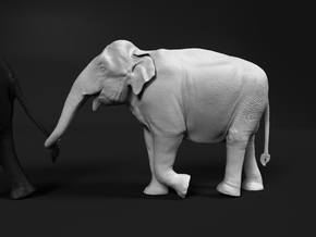 Indian Elephant 1:64 Female walking in a line 4 in Smooth Fine Detail Plastic