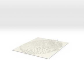 FINGUERPRINT-1 in White Natural Versatile Plastic