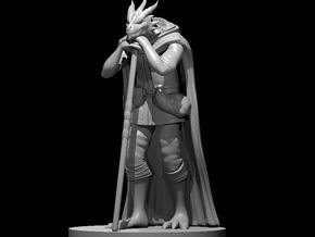 Dragonborn Druid Leaning on Staff in Smooth Fine Detail Plastic
