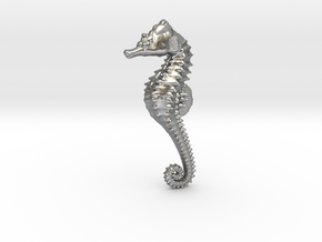 Seahorse in Raw Silver