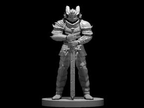 Paladin of the Ancients in Smooth Fine Detail Plastic