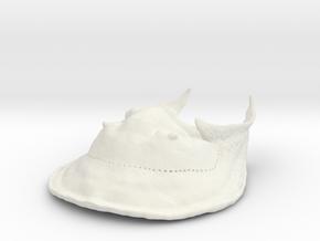 Trilobite - Harpes Perriradiatus (no stand) in White Natural Versatile Plastic