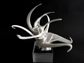 Sea Anemone in White Natural Versatile Plastic