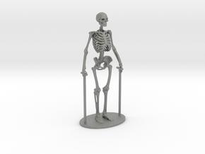 O Scale Skeleton in Gray PA12