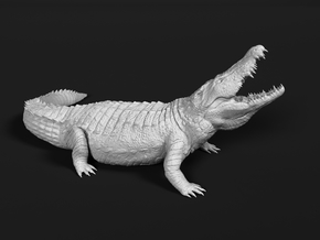 Nile Crocodile 1:12 Lifted head with mouth open in White Natural Versatile Plastic