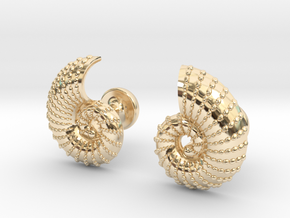 Nautilus Shell Cufflinks in 14K Yellow Gold