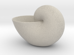 Clam Geometric Plant 3D Printing Planter  in Natural Sandstone