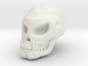 Fossilised Alien Skull 1 in White Natural Versatile Plastic