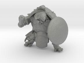 Turtle Warrior miniature model fantasy games rpg in Gray PA12