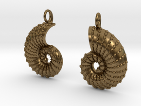 Nautilus Shell Earrings in Natural Bronze
