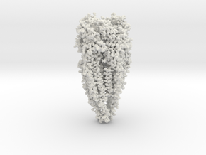 Acetylcholine Receptor - All Atom - Small Size in White Strong & Flexible