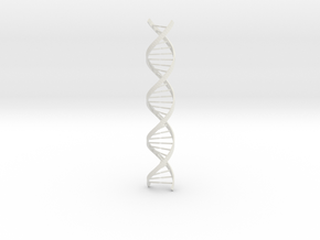 DNA Long in White Natural Versatile Plastic