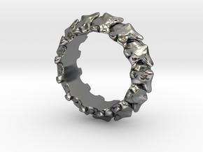 Vertebrae in Polished Silver