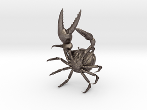 Fiddler Crab - Small in Stainless Steel