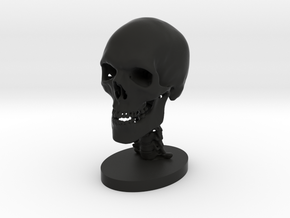 3/4 Scale Human Skull in Black Strong & Flexible