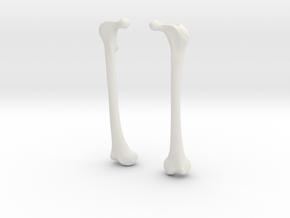 Femur Earrings in White Natural Versatile Plastic