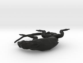HYLONOMUS 7cm 1/2 in Black Strong & Flexible