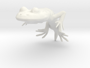 GEROBATRACHUS SOLID in White Natural Versatile Plastic