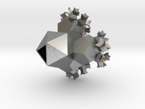 Rubenstein's Cactus in Natural Silver