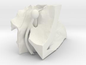 ppfhalvedretrymedium in White Natural Versatile Plastic