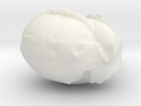 WLTest in White Natural Versatile Plastic