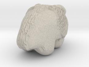 Bison Print in Natural Sandstone