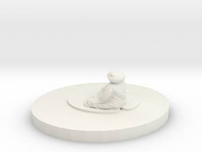 pond zen in White Natural Versatile Plastic