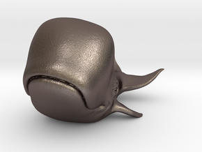 Happy Whale small 60mm long in Polished Bronzed Silver Steel