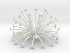 seed head 11   boolean (fixed) in White Natural Versatile Plastic