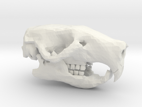 Mouse Skull in White Natural Versatile Plastic