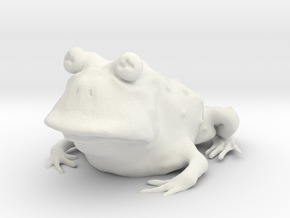 Hypnotoad in White Natural Versatile Plastic