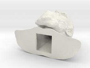 Charles Darwin Bust in White Natural Versatile Plastic