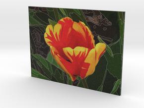 Tulip - flat - 4in in Full Color Sandstone