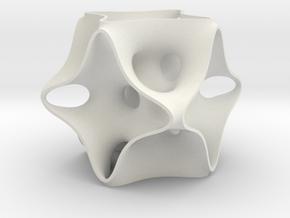 Xxy1 in White Natural Versatile Plastic